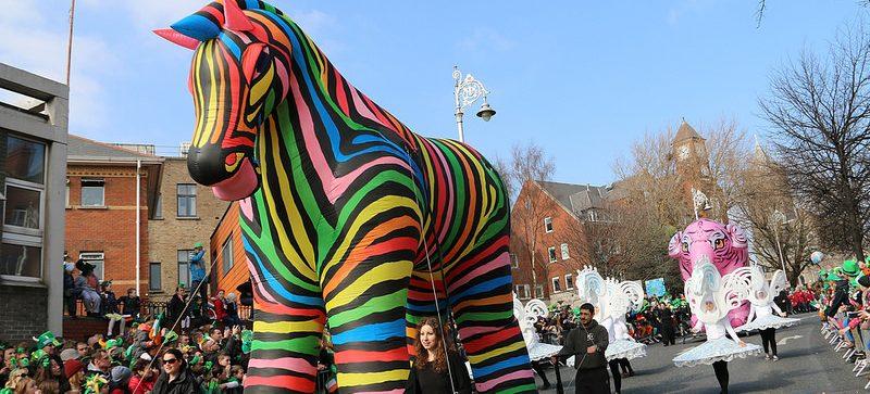 rainbow zebra, inflatable art